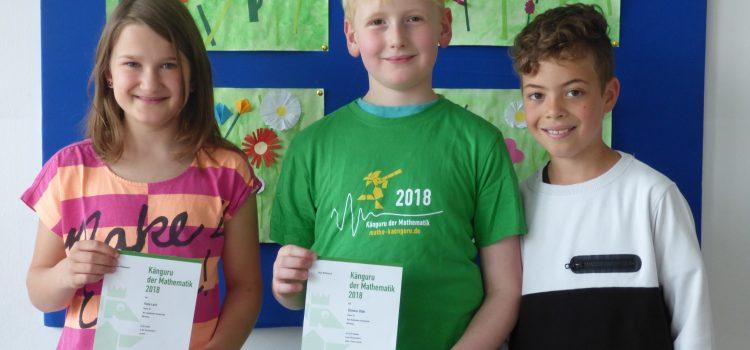 Känguru der Mathematik: Wettbewerb für die Drittklässler